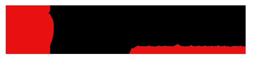 DMS-Icon-logo12